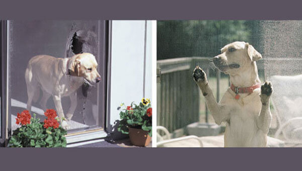 Custom Pet Screen & Screen Dog Doors Huntington Beach